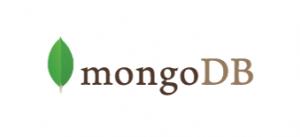 MongoDB_Logo_Full_White